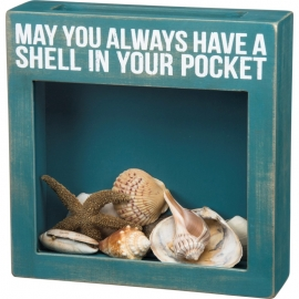 Sea Shell Holder - May You Always Have A Shell