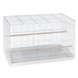 Flight Bird Cage